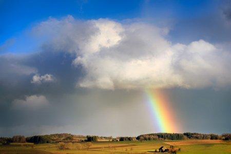 Brno pokračuje v podpoře projektů ke zmírnění sucha