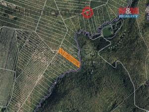foto Prodej lesa, 7566 m2, Brno-Líšeň